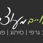 דימויים מעוצבים - ממליצה על זכאי קום בניית אתרים בחיפה והצפון