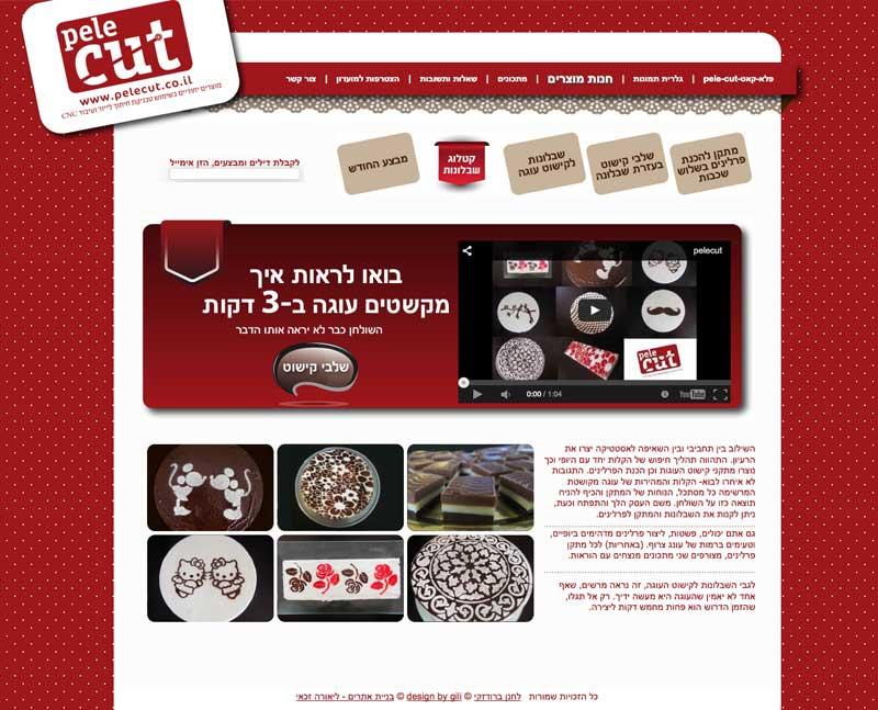   בניית אתרים בחיפה והצפון – זכאי קום 052-6551414pelecut