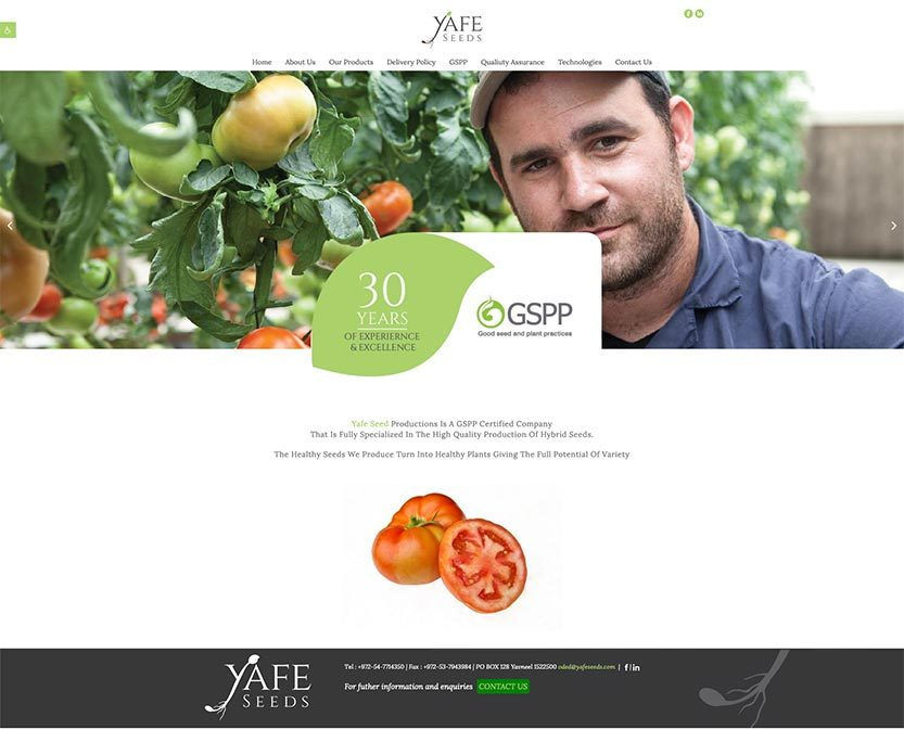 YAFFE-SEEDS-PRODUCTION---An-innovative-international-seed-company_---yafeseeds.com